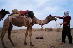 Jaisalmer Safari desierto Thar 06 - Jaisalmer y el desierto del Thar, un safari de dos días inolvidable