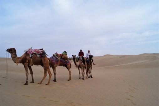 Jaisalmer Safari desierto Thar 07 - Jaisalmer y el desierto del Thar, un safari de dos días inolvidable