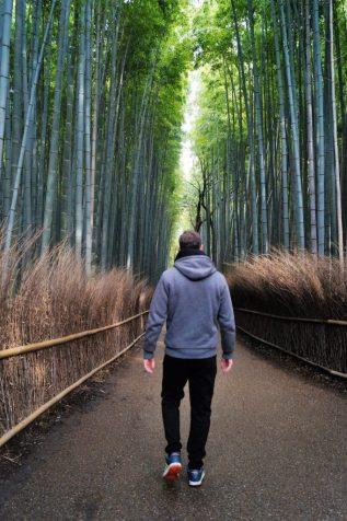 Kyoto - Arashiyama - Caminando entre el Bosque de Bambú