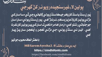 MBSaremAyesha2.0