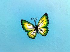 mariposa plantilla