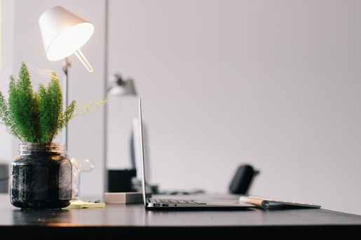 Desk lamp, faux plant