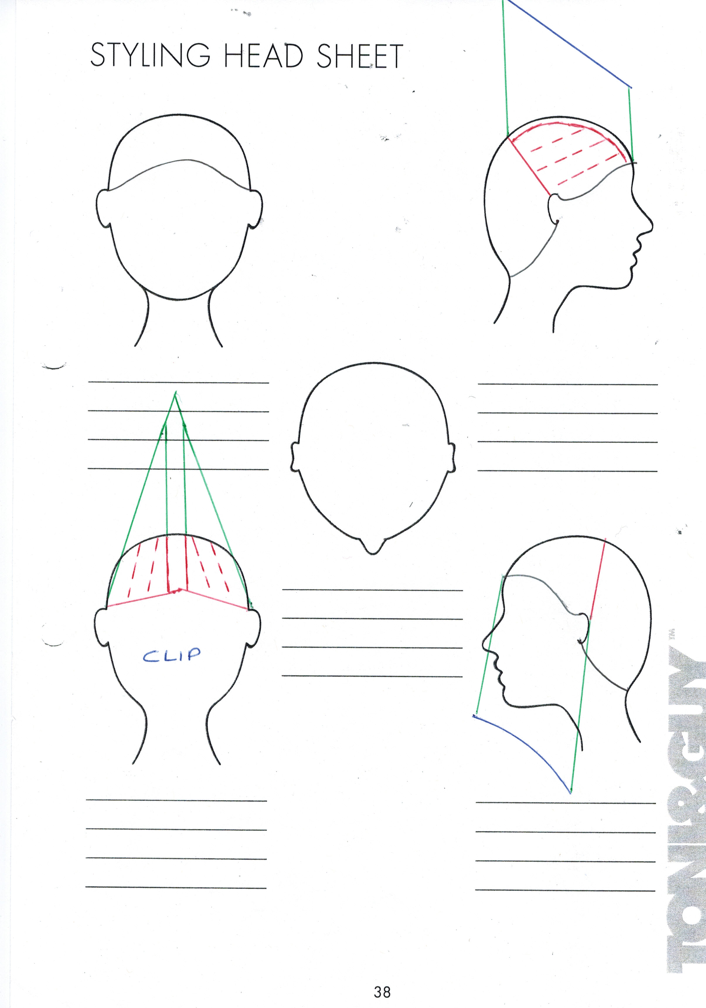 Blank Cosmetology Head Sheets For Pictures To Pin