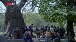 Gerzek Saban (1980) BÜYÜK ÇINARIN ALTI