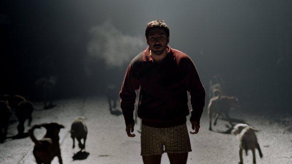 Emin Alper'in, senaryosu ve oyuncu seçimiyle ön plana çıkan, belirsizlik ve gerçekliğin bütün oluşturduğu filmi Abluka incelemesi.