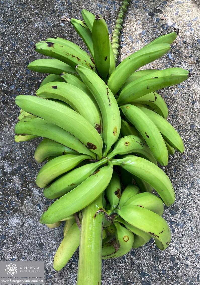 Plátano-Guineo verde