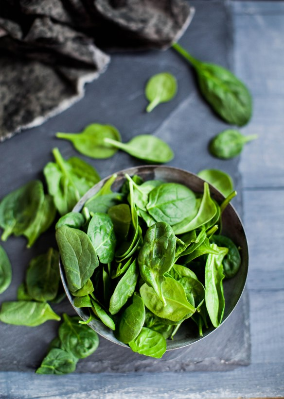 Sinfully Spicy- Palak (Saag Paneer),Spinach With Indian Cheese003