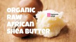 Where to Buy Raw Shea Butter in Singapore