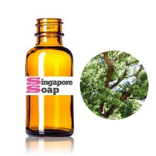 Pure Camphor Essential Oil