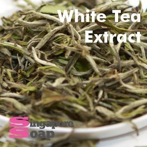 White Tea Extract Singapore