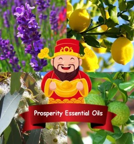 Essential Oils for Prosperity & Money Attraction