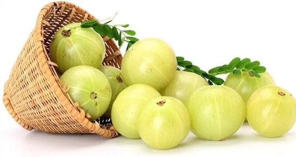 Organic Amla Oil (Virgin, Cold Pressed)