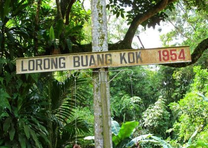 Romance In Kampong Lorong Buangkok