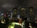 スーパーツリーの上にルーフトップバーがありますよ!シンガポールの夜景おすすめバー@ガーデンズ・バイ・ザ・ベイ