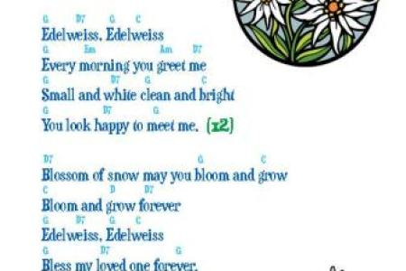 Edelweiss ukulele chords path decorations pictures full path edelweiss sheet music by rodgers hammerstein lyrics chords edelweiss sheet music zhiyi li xtreamcool on pinterest edelweiss singin in the rain a seattle m4hsunfo