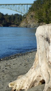 deception-pass_73
