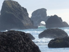 oregon-coast__indian-beach_31