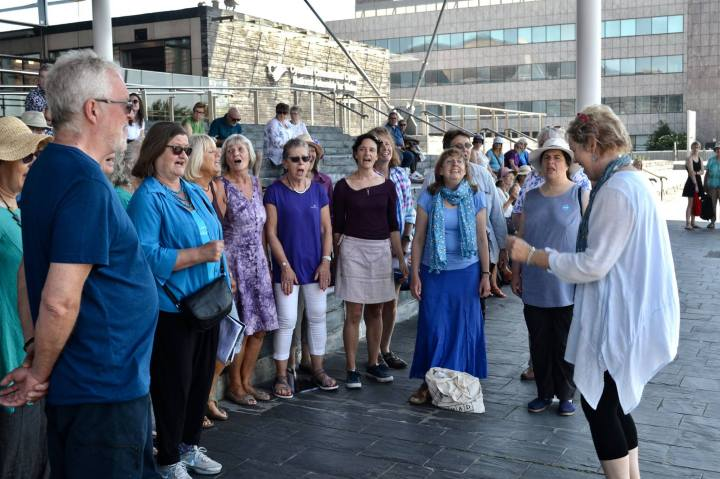 Sing-for-water-2017-busking-choir-02-Senedd-steps