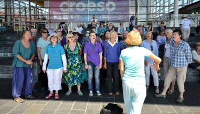 Sing-for-water-2017-busking-choir-09-senedd-steps