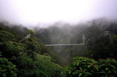 Singshore Bridge Sikkim