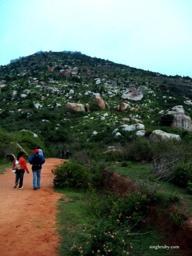 This is how the trek looked from the start point.