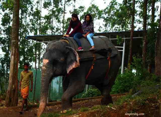 Elephant ride at Munnar