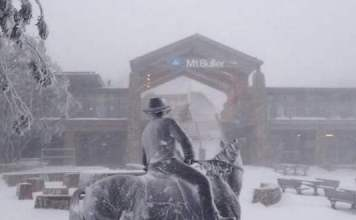 Image via Mt Buller resort, which received 23cm of snow ahead of the boy's disappearance yesterday