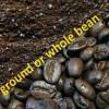 dark ground bean
