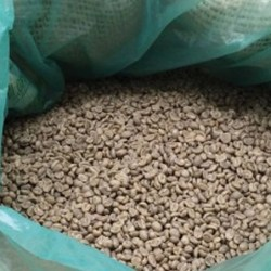 Buy Green (unroasted) Haitian Coffee