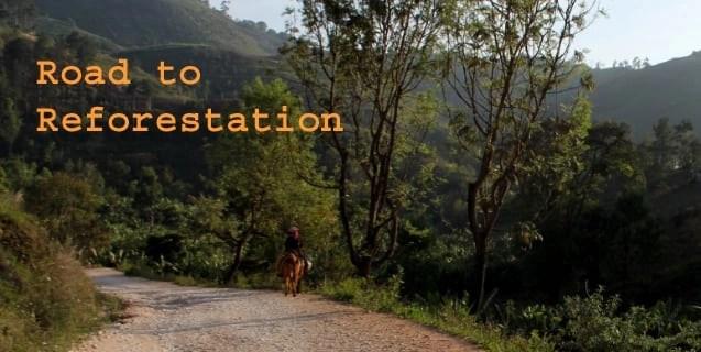 Reforest haiti earthdaycopy