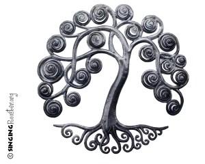 curly tree haiti
