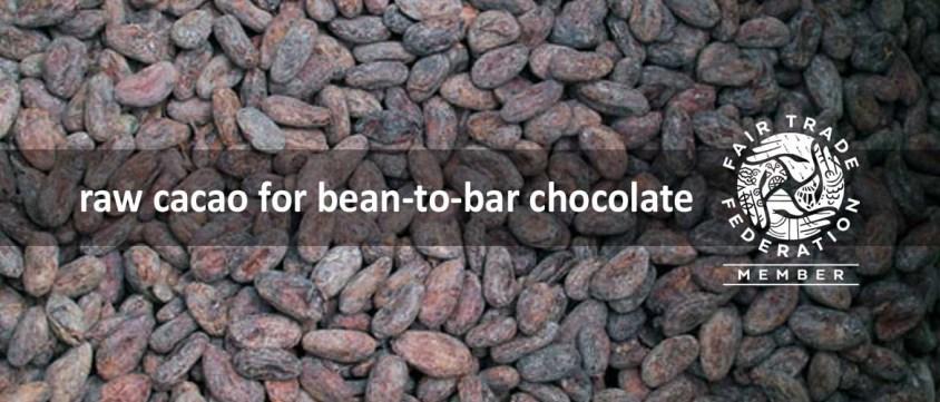 raw-cacao-haiti-bean-bar-cho