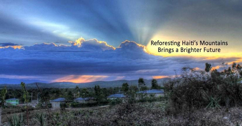 reforest-haiti-stops-flooding