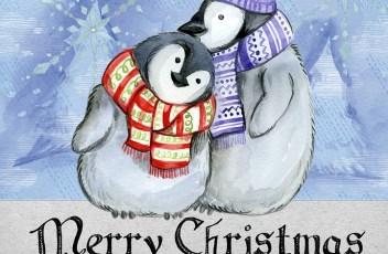 merry-christmas-2984136_960_720