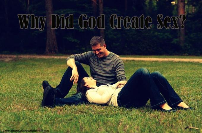 Why Did God Create Sex?