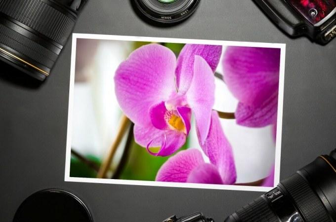 100 Stock Photo Websites