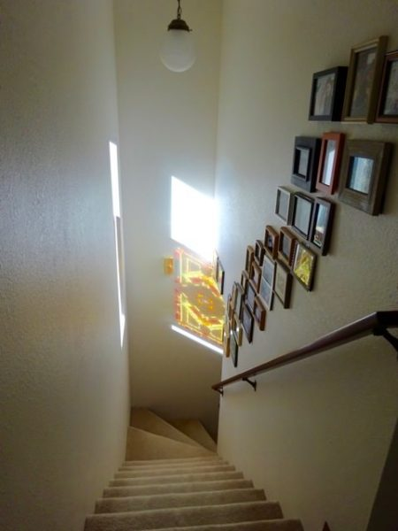 Stairwell photo gallery wall