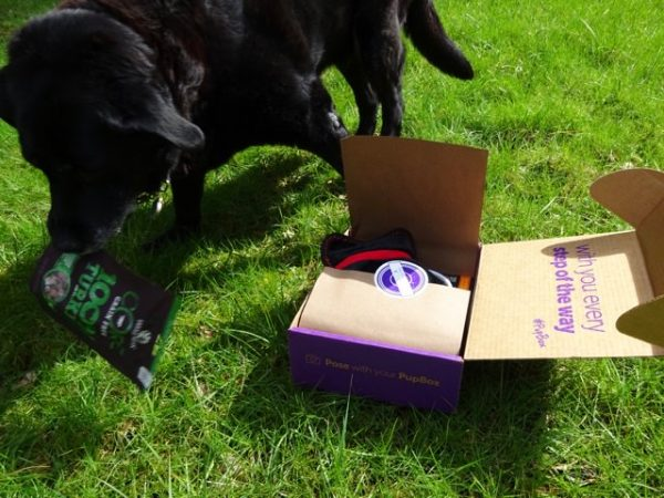 PupBox training treats