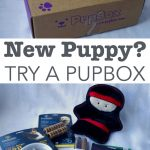 PupBox toys review