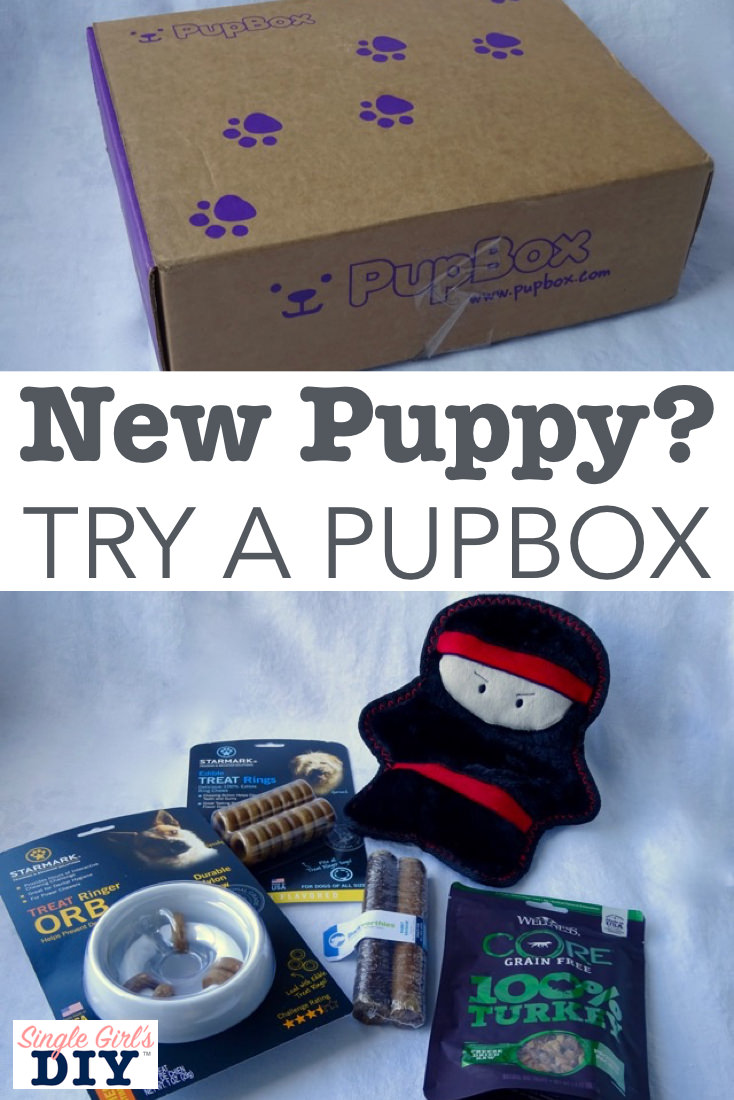 PupBoxReview