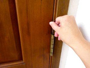 Remove a door hinge pin