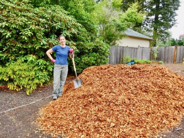 Wood chips to replace grass