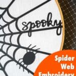 closeup image of spooky spider web embroidery hoop
