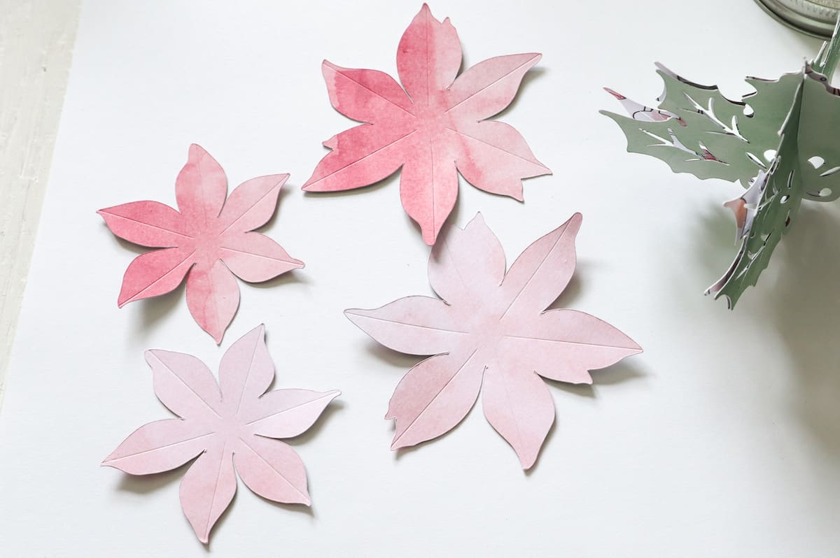 red paper poinsettia flower parts
