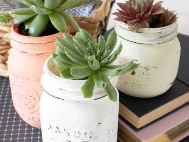 Chalk Paint Mason Jars with plants