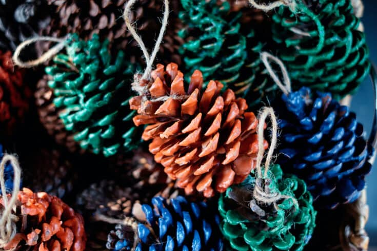pine cones dipped in colored wax