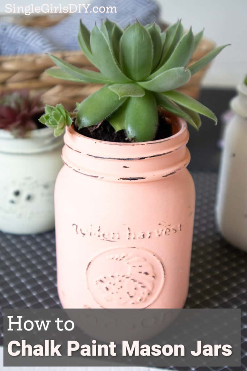 chalky painted mason jars with succulents