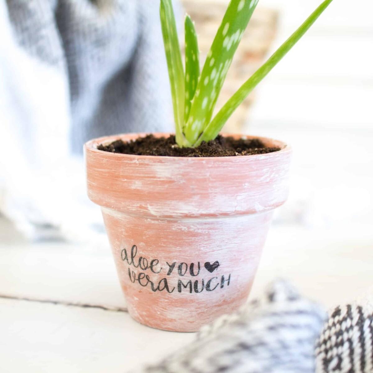 Aloe You Vera Much Planter Pot