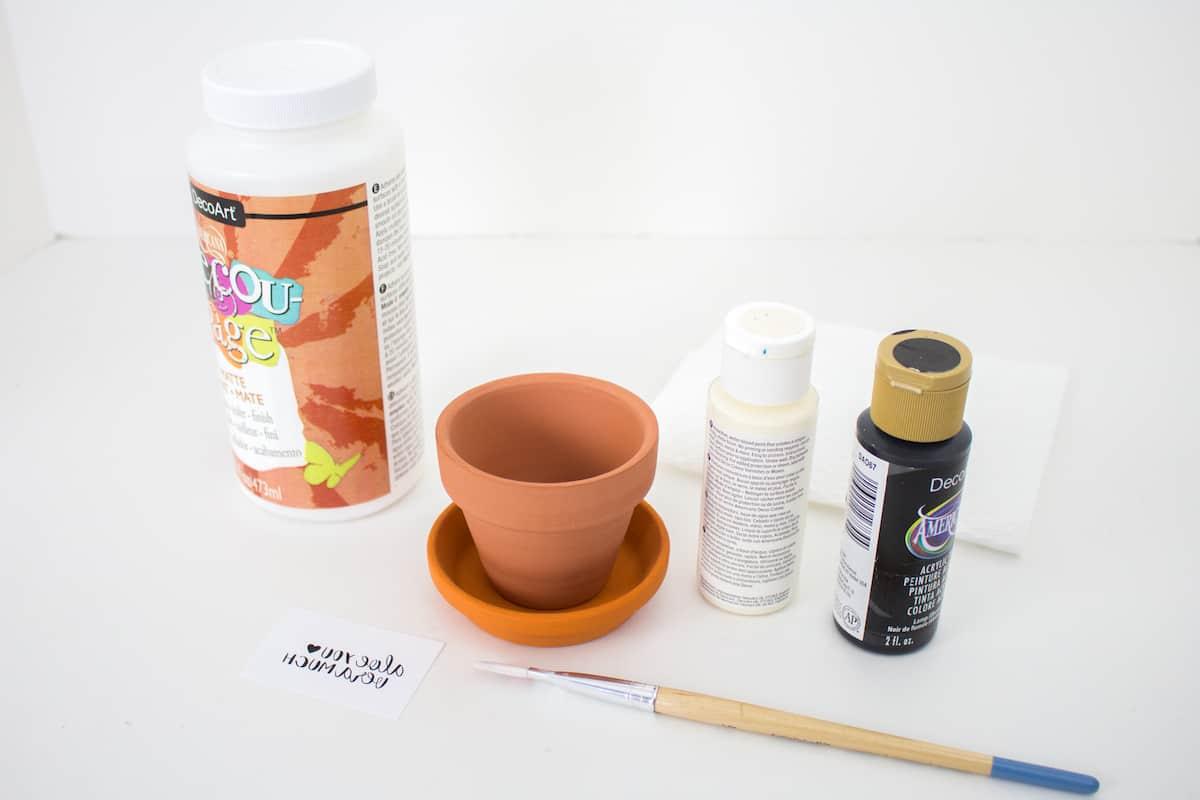 Aloe You Vera Much Pot Supplies