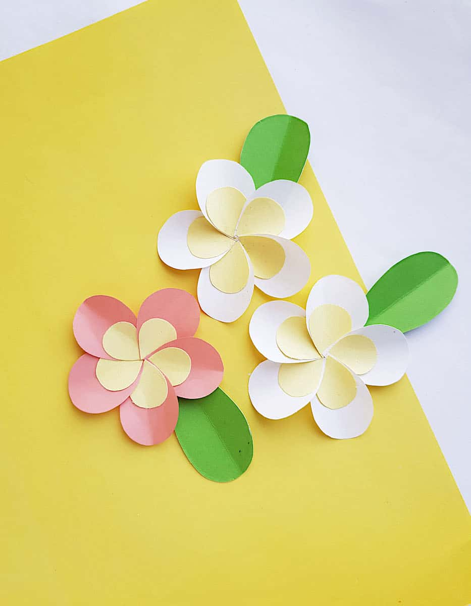 Paper Plumeria Cluster on Yellow Background